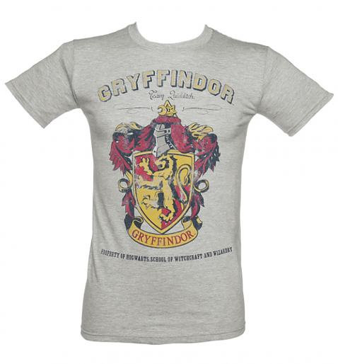 Mens Grey Harry Potter Gryffindor Team Quidditch T-Shirt